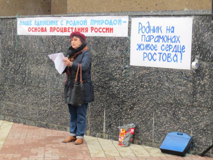 Ирина Сафронова, председатель Ростовского областного ЯБЛОКА. Фото: Екатерина Котлярова